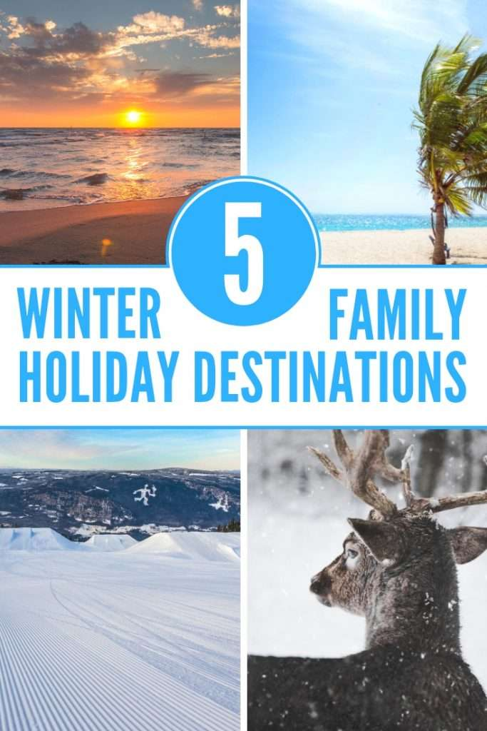 Check out these 5 amazing winter family holiday destinations. Where would you take your family in the winter?