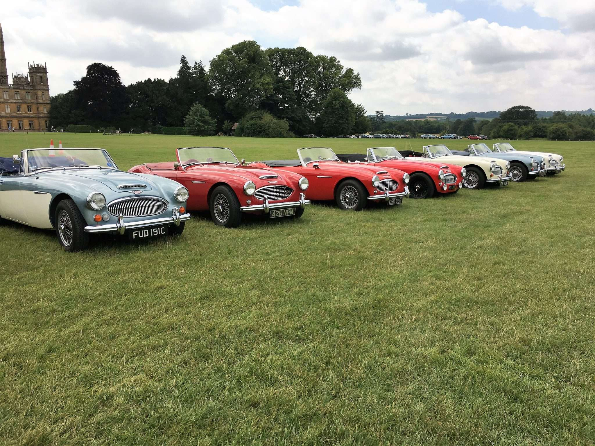 A line up of classic cars in a field