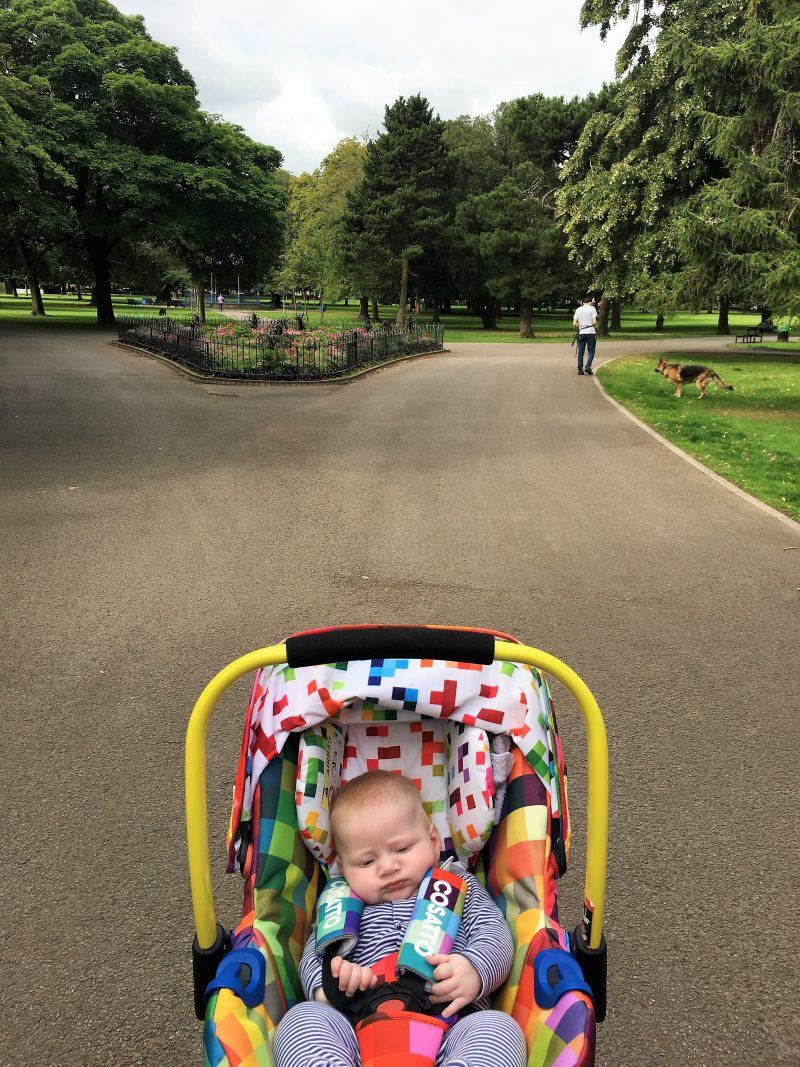 William in pram at entrance to park