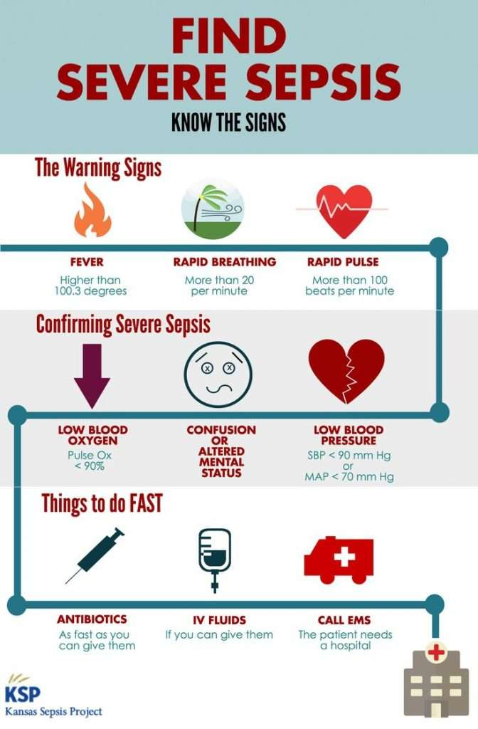A health infographic explaining the signs of sepsis