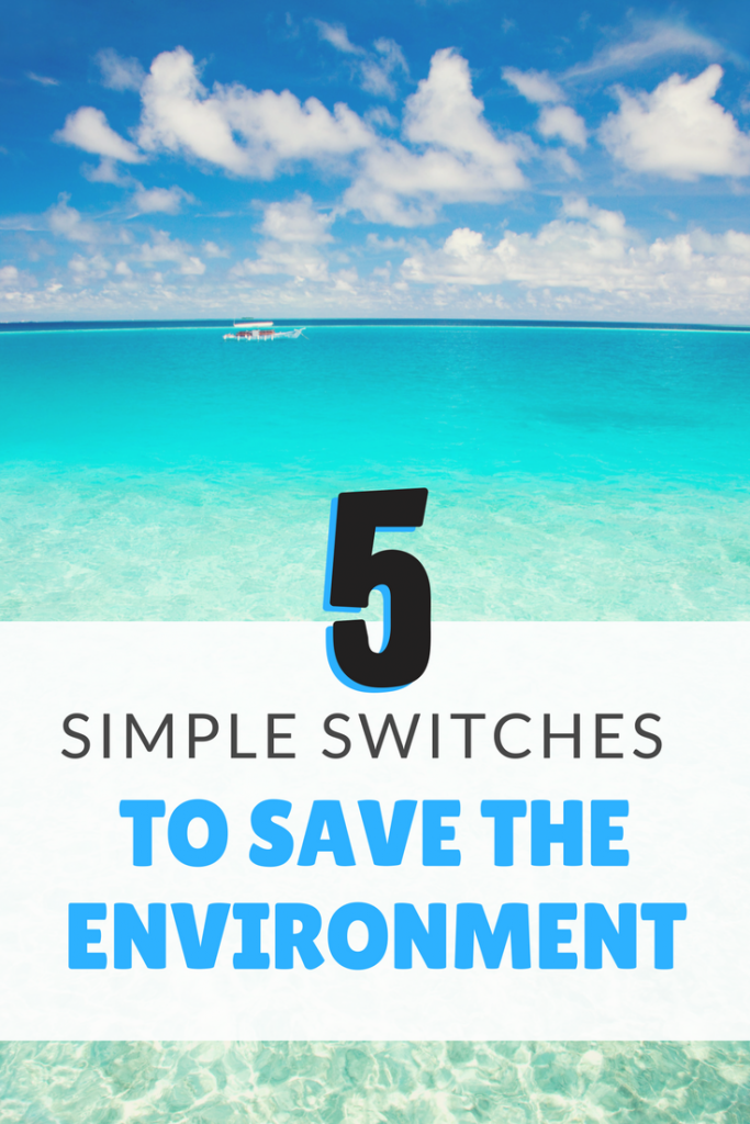 5 Simple Switches that any family can make to cut down on plastic usage and save the environment.