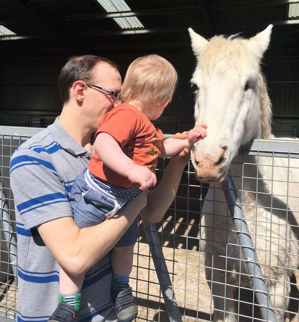 William is lifted up to stroke a white horse. With a big baby this means a work out for daddy!