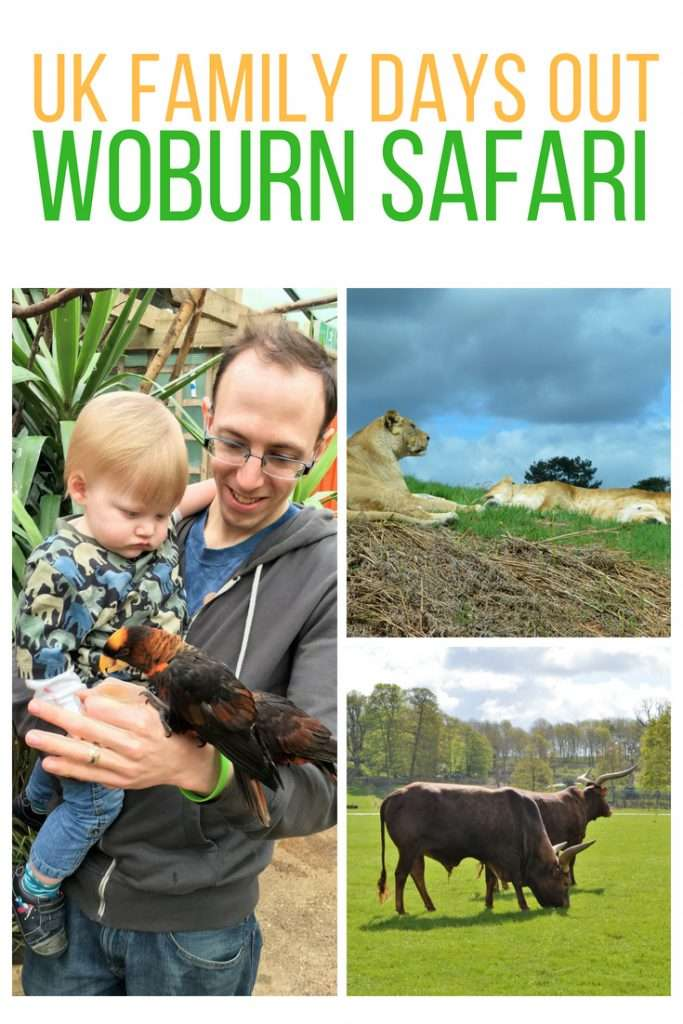 A fantastic day out in the UK at Woburn Safari Park! Suitable for the entire family.