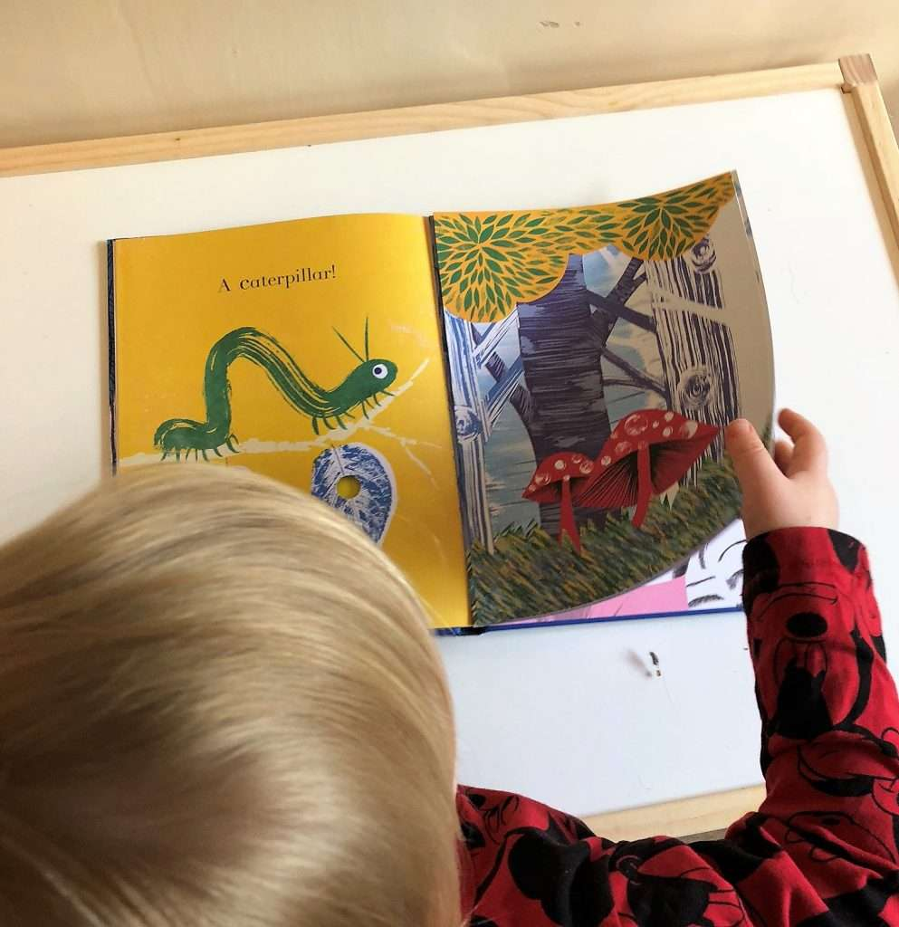 Julia Donaldson's Animalphabet Book Review