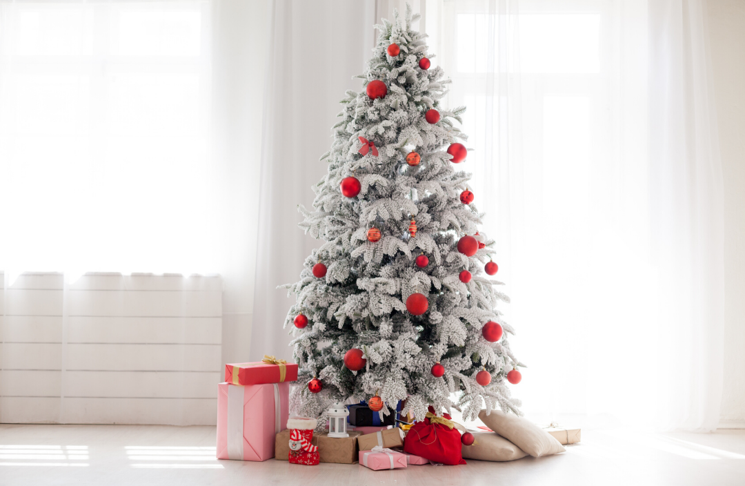 11 ways to be more green and eco friendly at Christmas with your choice of Christmas tree